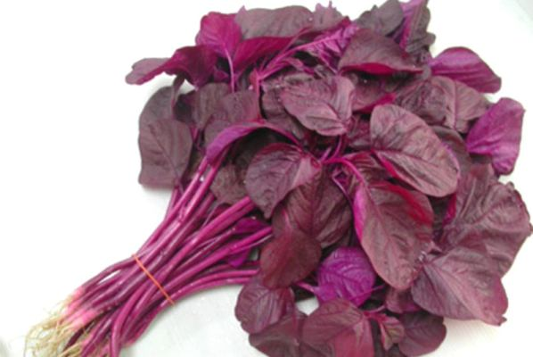 Red Spinach / Lal Sagh